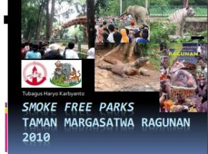 SURVEY SMOKE FREE TMR 2010