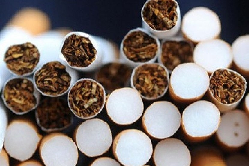BPS: Rokok Beri Pengaruh Besar Terhadap Angka Kemiskinan