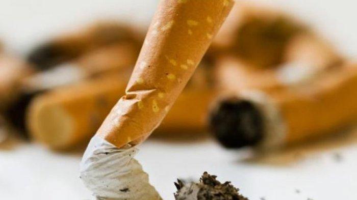 Lebih 7 juta Orang Konsumsi Tembakau dan Hampir 900.000 Perokok Pasif Meninggal Setiap Tahun